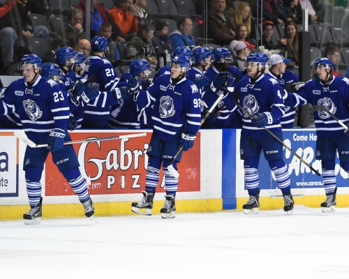 Mississauga Steelheads bench. Photo by Aaron Bell / OHL Images