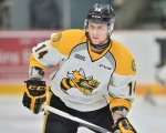 Pavel Zacha of the Sarnia Sting. Photo by Terry Wilson / OHL Images.