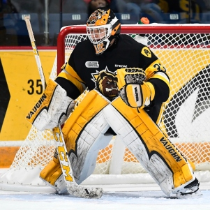 Kaden Fulcher of the Hamilton Bulldogs (by Aaron Bell/OHL Images)