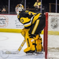 Brigden native Kaden Fulcher grew up watching the Sarnia Sting