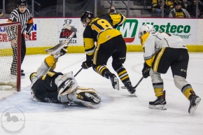 PHOTOS: Sarnia vs Hamilton