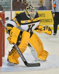 Brednan Bonello has been very busy in the Kingston net this season (Photo by Terry Wilson)