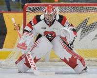 Michael DiPietro with the league leading Ottawa 67's (Photo by Terry Willson)