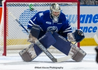 Jacob Ingham is a draft pick of the Los Angeles Kings (Matt Hiscox Photography)