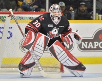 Stephen Dhillon of the Niagara IceDogs. Photo by Terry Wilson / OHL Images.