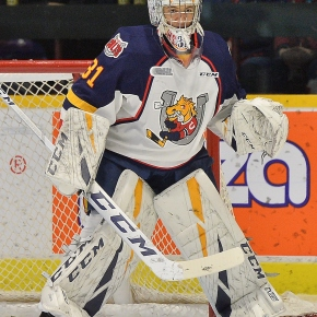 Barrie's rookie netminder named CHL goalie of the week