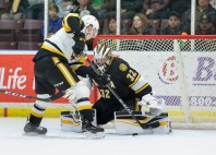 Cameron Lamour has been great since joining the Sarnia Sting (Metcalfe Photography)