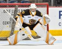Zachary Roy of the Hamilton Bulldogs (OHL Images)
