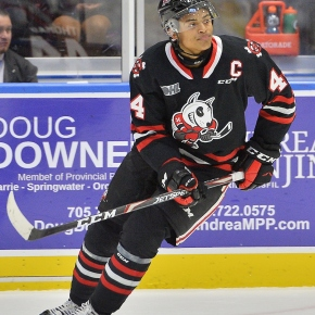 Petes add IceDogs' captain Akil Thomas