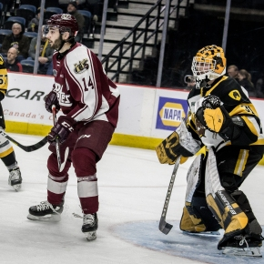 PHOTOS: Bulldogs vs Petes