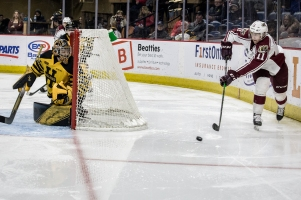 Petes captain Zach Gallant looks to find an open teammate in the offensive zone. (Logan Reid Photography)