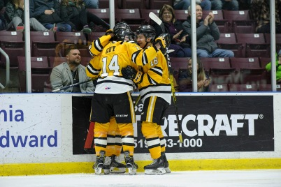 The Sarnia Sting celebrate a late third period goal. (Metcalfe Photography)