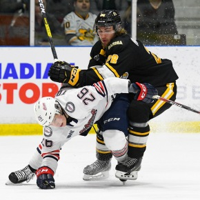 Tomasino named OHL player of the week