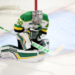 Brochu receives top goalie and rookie honours forJanuary